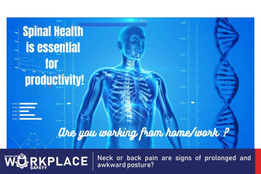 Workplace Safety posture - Neck or back pain are signs of prolonged and awkward posture?